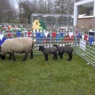 Farm visit – March 2014
